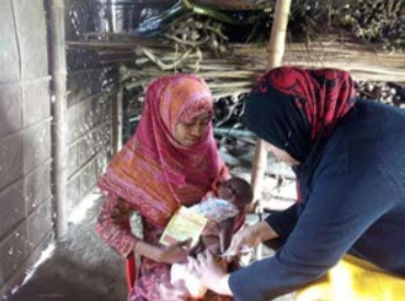 The Government Family Welfare Assistants, Health Assistants, and Community Health Care Providers in Bangladesh