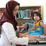 Iran's Community Health Worker Program